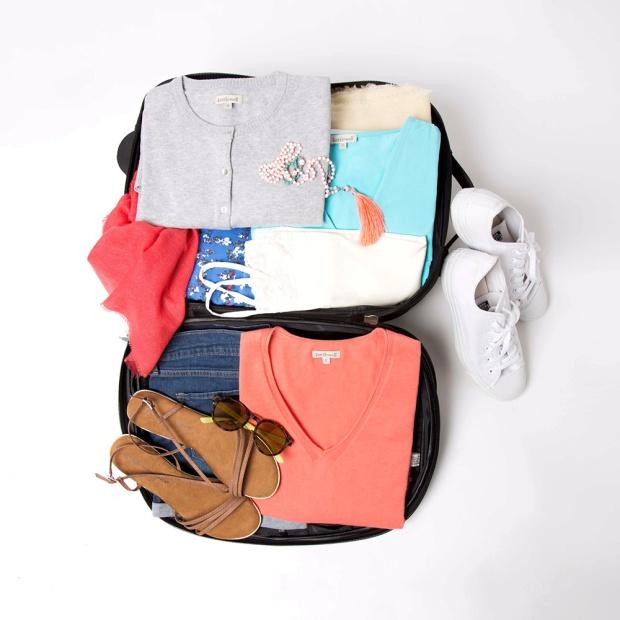 suitcase_crop