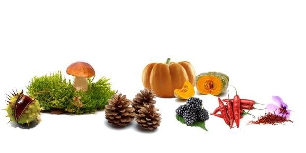 raw-autumn_header