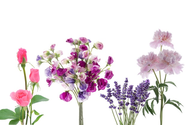 raw-header_flowers