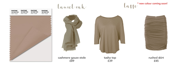 warm-taupe_a